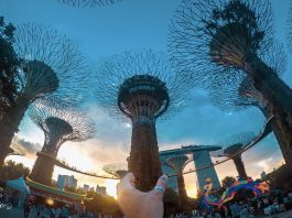 guide-travel-singapore-pic2