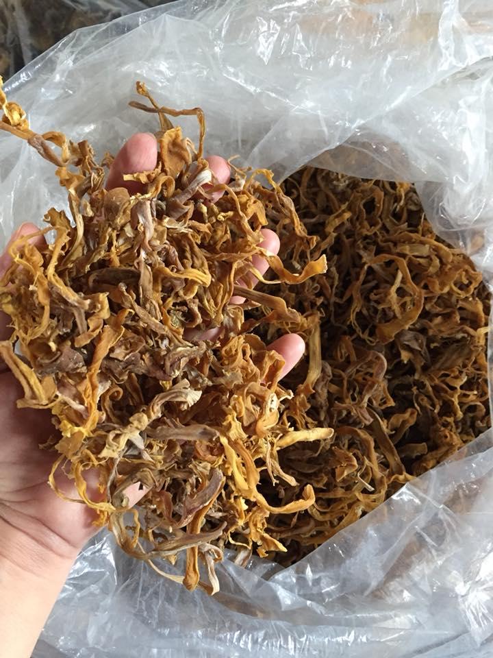 mang-rung-kho-dat-chuan