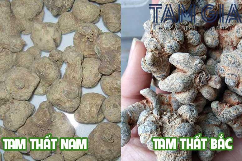 tam that nam va tam that bac