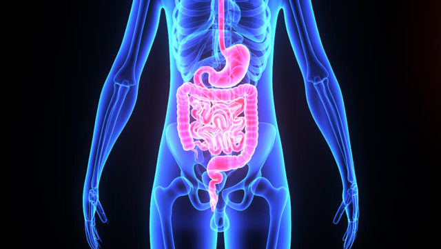 Các bệnh lý liên quan đến hệ tiêu hóa, cụ thể là đại tiện phân lỏng có thể được điều trị dứt điểm với phèn đen.