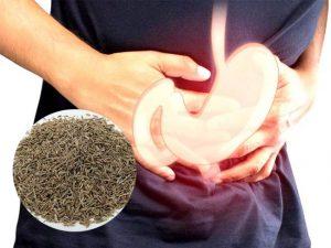 bài thuốc dân gian chữa viêm hang vị dạ dày