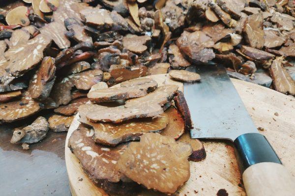 Bán nấm ngọc cẩu