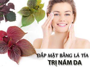 Bài thuốc trị nám da mặt từ lá tía tô